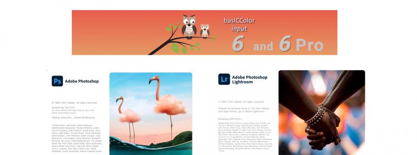 Adobe-input6